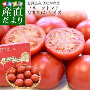 北海道産 JAながぬま フルーツトマト MまたはLサイズ 約900g (9〜12玉入り) 送料無料 とまと 高糖度 市場発送
