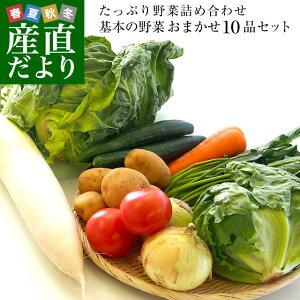 市場からご自宅へ直送 たっぷり野菜詰め合わせ 応援セット (国産おまかせ野菜10品セット)※キャベツ、レタス、ほうれん草、小松菜、きゅうり、トマト、ナス、大根、ごぼう、じゃ