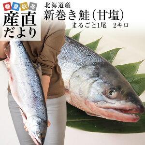 北海道から産地直送 北海道産 新巻き鮭(甘塩) まるごと1尾 2キロ 送料無料 さけ サケ シーフード