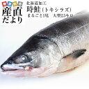 送料無料 北海道から直送  北海道加工  時鮭(トキシラズ) まるごと1尾 大型2.5キロ (ロシア産) ときさけ …