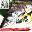 送料無料 北海道産 山漬け寒風干し秋鮭 1尾 姿切身 約2.7キロ