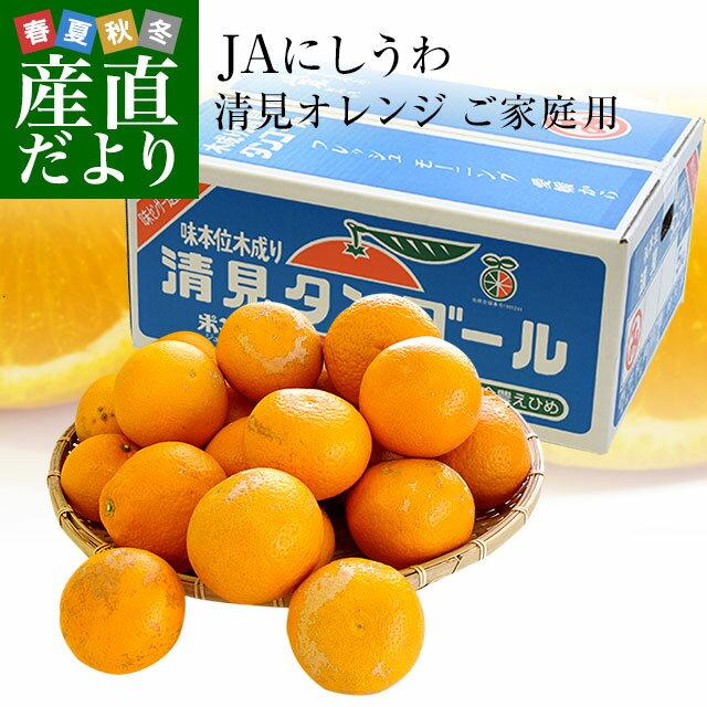 送料無料 愛媛県より産地直送 JAにしうわ三崎共選 清見オレンジ ご家庭用 2LからMサイズ 5キロ( 25から35玉前後)