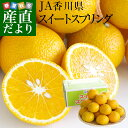 香川県から産地直送 JA香川県 スイートスプリング 5キロ (18玉から28玉前後) 送料無料 柑橘 みかん オレンジ 讃岐 さ…