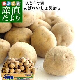 送料無料 北海道より産地直送 JAとうや湖 じゃがいも 湖ばれいしょ「男爵」 Mサイズ 10キロ 馬鈴薯 ジャガイモ