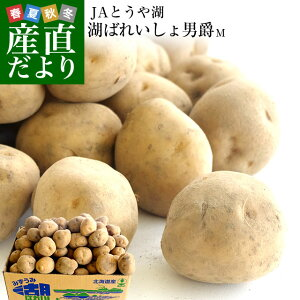 北海道より産地直送 JAとうや湖 じゃがいも 湖ばれいしょ「男爵」 Mサイズ 10キロ 馬鈴薯 ジャガイモ 送料無料