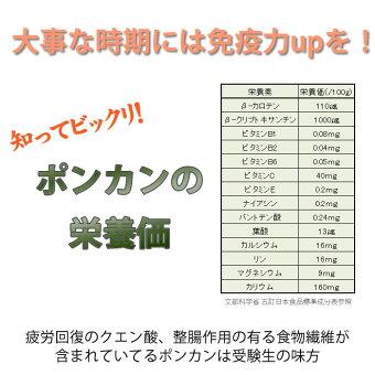 ポンカンの栄養価は受験生の味方