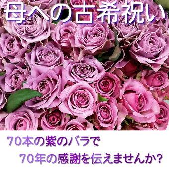 ≪古希のお祝いに70本の紫のバラ≫【送料無料】セール【豪華ラッピング付】【トゲ取り処理済】【メッセージカード付】※お届け日が近い場合はミックスカラーになります