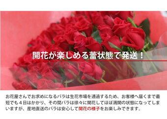 国産バラの花束赤色系50cm×1本トゲ取り無料※20本以上★★バラ女性お祝い誕生日ローズプレゼントメッセージカード付き薔薇結婚記念日フラワーギフト延命剤無料退職祝い