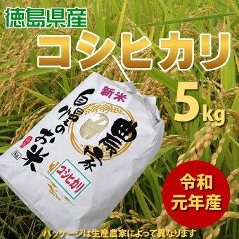 【出荷始まりました!】平成30年産新米徳島県産農家自慢のお米コシヒカリ5kg(白米)送料無料/
