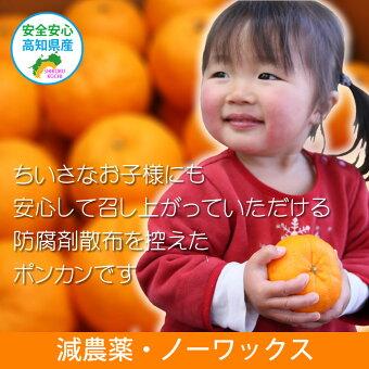 減農薬・ノーワックス