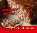 三田屋ハンバーグ1ヶ入り5パックセット【送料込み】