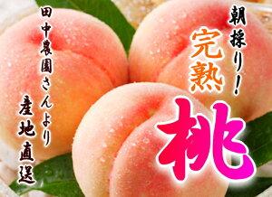 田中農園さんの完熟桃 11〜13玉【4kg】和歌山県から直送(送料無料)