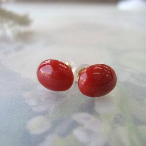 高知産血赤珊瑚のオーバルピアス(7.2×9.2ミリ)/K18/さんご/オススメ『宝石サンゴ』
