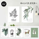 ポスター A2 (キャンバス素材) ボタニカルコレクションVo.1 花 植物 シンプル おしゃれ アートポスター アートプリント フォトポスター…