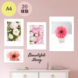 ポスター インテリア A4 お花 モダン 植物 おしゃれ アートポスター アートプリント フォトポスター サンサンフー フラワーコレクション A4 ※フレームなし