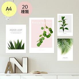 ポスター インテリア A4 ボタニカル モダン 植物 おしゃれ アートポスター アートプリント フォトポスター サンサンフー リーフコレクション A4 ※フレームなし