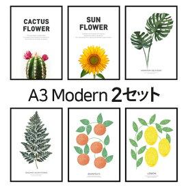 ポスター インテリア A3 ボタニカル 植物 おしゃれ アートポスター アートプリント アートフレーム フォトポスター サンサンフー 12種類から2枚選べる 送料無料29.7x42cm ※フレームなし