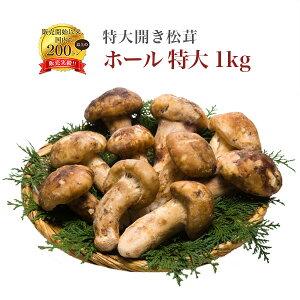 送料無料 冷凍松茸 1kg 中国産 つぼみ松茸 天然もの まつたけ 急速冷凍 すき焼き 茶碗蒸し 松茸御飯