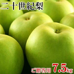 二十世紀梨(20世紀梨)7.5kg詰(22玉前後入/2...