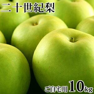 二十世紀梨(20世紀梨)10kg詰(32玉前後入/サイ...
