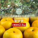 広岡農場の新甘泉(しんかんせん)梨 2.5kg詰(4〜6玉入) 鳥取県産 梨 赤秀(ご贈答用) 送料無料(北海道・沖縄を除…