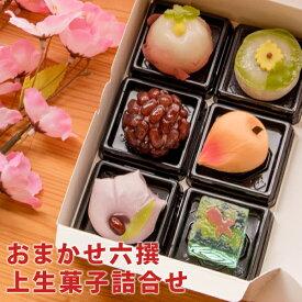 おまかせ六撰 上生菓子詰合せ(簡易パッケージ) 和菓子 送料無料(北海道・沖縄を除く)