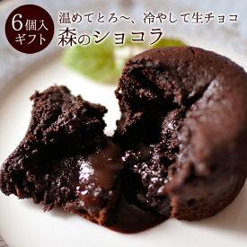 バレンタイン チョコレート ギフト 誕生日プレゼント フォンダンショコラ チョコ ギフト スイーツ 森のショコラ6個入 2021 バレンタイン限定ラッピング