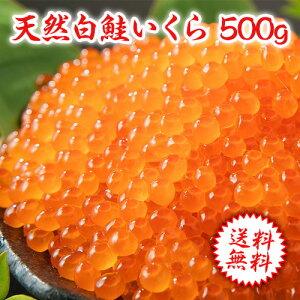 極洋 「鮭」いくら醤油漬け 1パック(500g)
