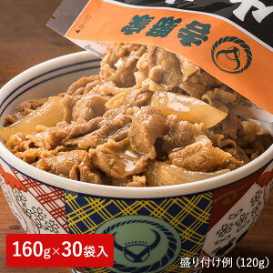 吉野家 牛丼の具 大盛 1袋(160g)×30袋