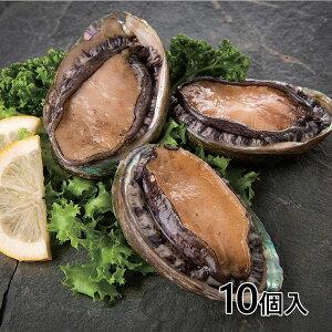 ウェストフーズ 冷凍殻付き蝦夷あわび 1セット(10個入)