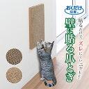 サンコー 猫 爪とぎ キャットタワー ソファー 壁 保護 貼れる しつけ ダンボール 吸着壁に貼れる猫のつめとぎ 段ボー…