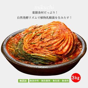 mikuchi三口一品白菜キムチ3kg