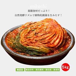 mikuchi三口一品白菜キムチ5kg