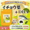 支援當做銀杏葉子+DHA hatsuratsu的每天!銀杏葉子抽出物DHA田7胡蘿卜蜂王漿末尾無味道蒜抽出物