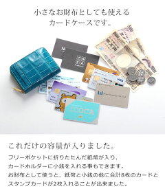 紙幣や小銭も入りミニ財布としても使えるカード入れ