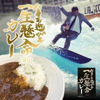 仕事も遊びも一生懸命カレー200g三共食品【常温】(送料別)