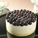 ブルーベリーいっぱいのレアチーズケーキ