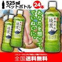 綾鷹 525mlPET x 24本入【送料無料・数量限定】 綾鷹 お茶 緑茶 ペットボトル コカ・コーラ