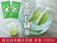 こだわりの水出し緑茶ティーパック!3個セット完全限定品!【水出し煎茶】
