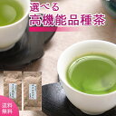 お茶 100g×2袋 高機能品種茶2個セット ゆたかみどりとさえみどりが選べます 送料無料 エピガロカテキン テアニン ケ…