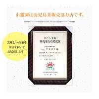 水出し緑茶上煎茶ティーパック!3個セット2018年新茶知覧茶を使用!熊本相良村産も登場!お好きな方を選べます。【送料無料】【水出し煎茶】【お茶】