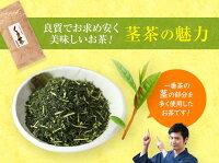 熊本産くき茶100g×5個セット