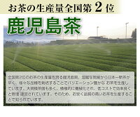 鹿児島茶(桜)100g送料無料2015年(メール便)!【お茶】【煎茶】【02P07Feb16】