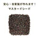 有機オーガニック素材の無農薬・無化学肥料「マスタード シード」 25g♪♪【洋芥子/カラシナ/洋がらし/粒マスタード/…