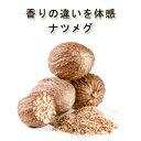 無農薬・無化学肥料 「伝統のナツメグホール」5個入♪♪【ナツメグホール/高品質ナツメグ/スパイスハーブ/香辛料】【…