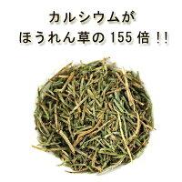 国産有機栽培オーガニック無農薬・無肥料の自然栽培「スギナ茶」
