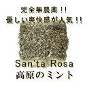 完全無農薬・無化学肥料 「高原のミント」 ペパーミント10g♪♪【ミントティー/ハーブ/ハーブティー】05P03Dec16