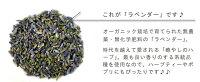 【最高品質】有機オーガニック素材の無農薬・無化学肥料「ラベンダー」10g♪♪【スパイスハーブ/ハーブティー】【フェアトレード】