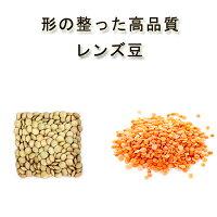 有機オーガニック素材の無農薬・無化学肥料「レンズマメ/レンズ豆」