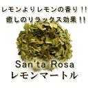 有機JAS認定オーガニックの無農薬・無化学肥料【レモンマートル・ティー】 リーフティーorティーバッグ♪♪【レモンマ…